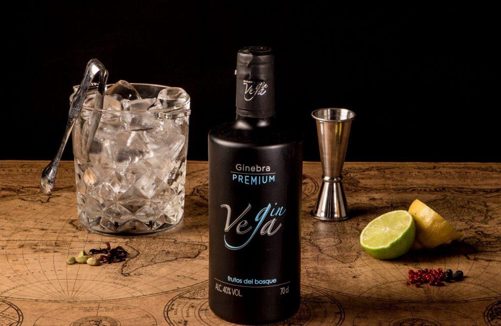 Preparar un gin tonic Gin Vega